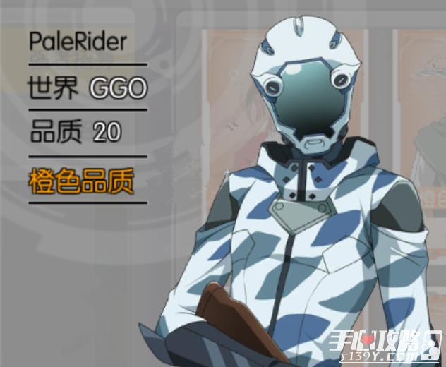 刀剑神域黑衣剑士GGO PaleRider人物图鉴1