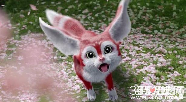 一只可爱呆萌兔子