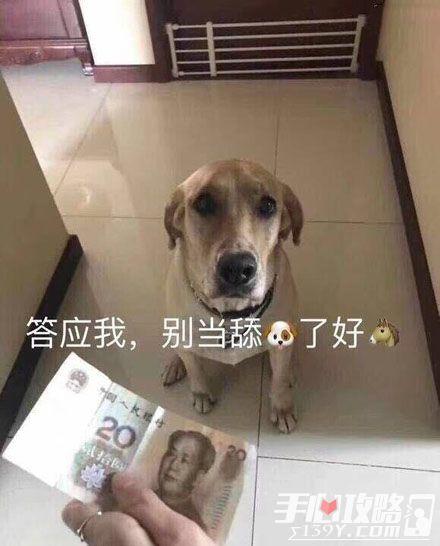 舔狗是什么意思3