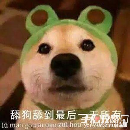 舔狗是什么意思2