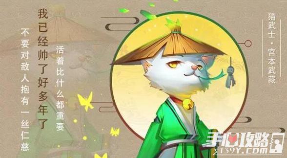 星之召唤士风猫武士武藏技能介绍1