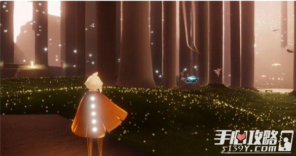 光遇雨林12颗光之翼位置大全27