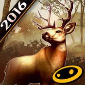 猎鹿人2016攻略大全