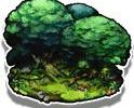 《最终幻想勇气启示录》探索地图拉迪乌斯之森详细图文攻略