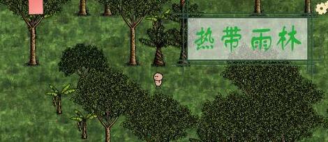 《一小时人生》热带雨林生存技巧
