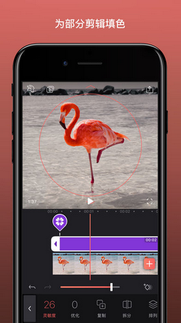 Enlight Videoleap