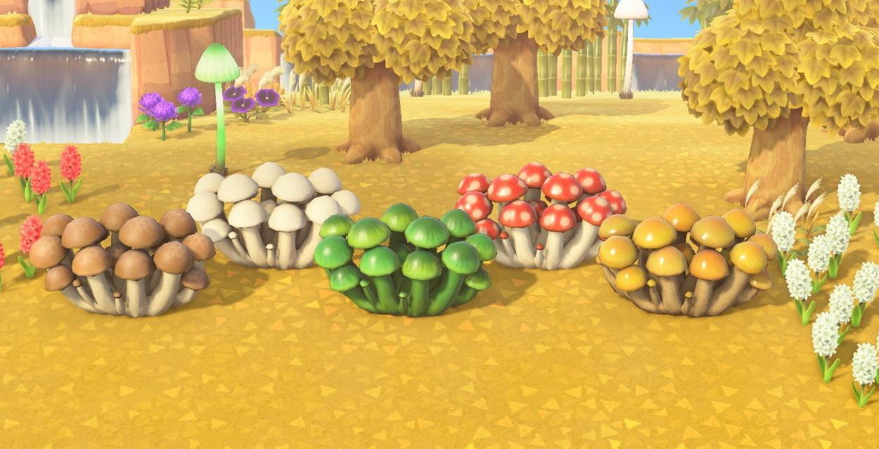动物森友会蘑菇主题家具汇总4
