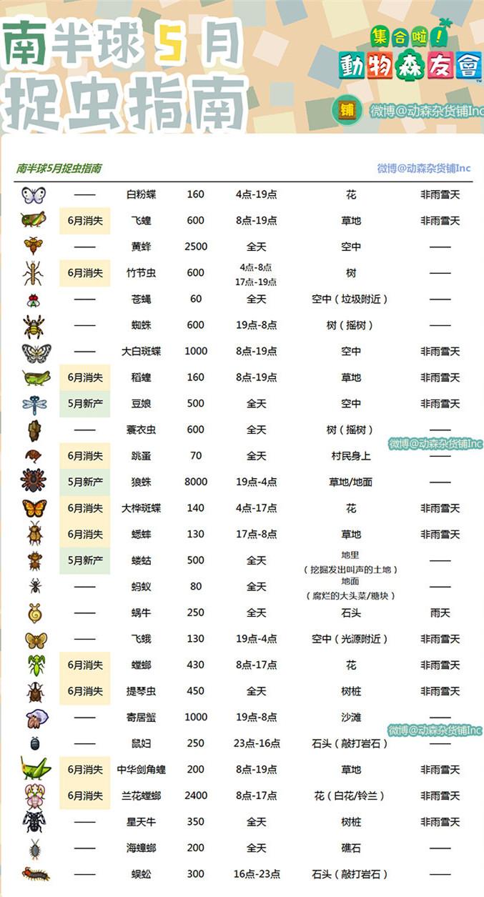 动物森友会5月南半球虫类大全1