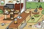 猫咪后院猫咪攻略大全