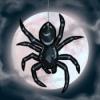 雾月下的蜘蛛攻略大全