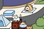 《猫咪后院》中怎么吸引雪喵 吸引雪喵的技巧