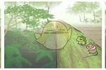 旅行青蛙景点明信片获得方法解析