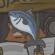 Tsuki月兔冒险金枪鱼获得方法介绍