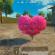 和平精英爱心树作用介绍