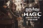 《哈利波特:魔法觉醒》即将来到中国 华纳兄弟互动娱乐公司与网易宣布联合开发